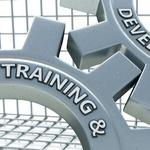 4 ways regular training improves your company