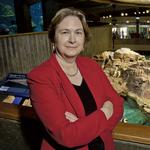 Executive Profile: Nigella Hillgarth is going deep — ocean deep — to build on the <strong>Aquarium</strong>'s tradition for innovation