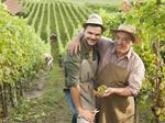 9 things you didn't know about wine production