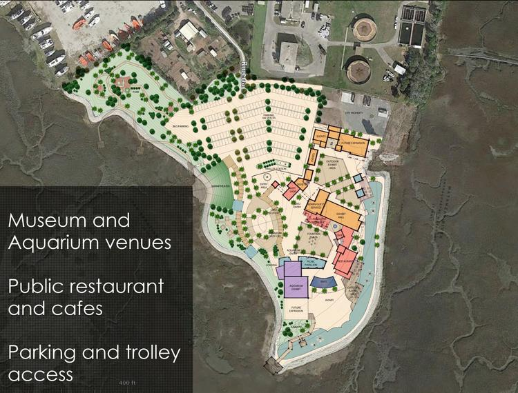 St Augustine Aquarium Project Stems From Passion