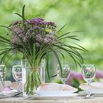 Summer entertaining: Why you should have a garden party