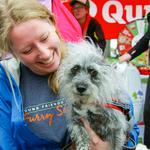 Good Works: Furry Scurry raises $940<strong>K</strong> for homeless pets