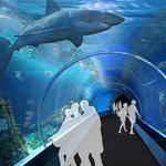 Union Station's new aquarium will need $18 million in TIF