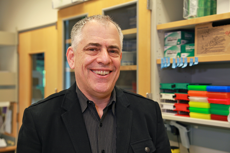 Dr. Louis Picker is associate director of the OHSU Vaccine and Gene Therapy Institute.