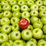 Use visibility marketing to stand out from the crowd