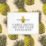 Large Hotel of the Year Finalists