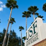 Five USF researchers added to elite scientific class