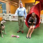 Petplan revamps policy options