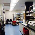 Welcome to the Cystic Fibrosis Foundation's new Lexington labs