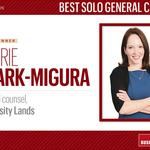 HBJ Best Corporate Counsel 2016: Best Solo General Counsel