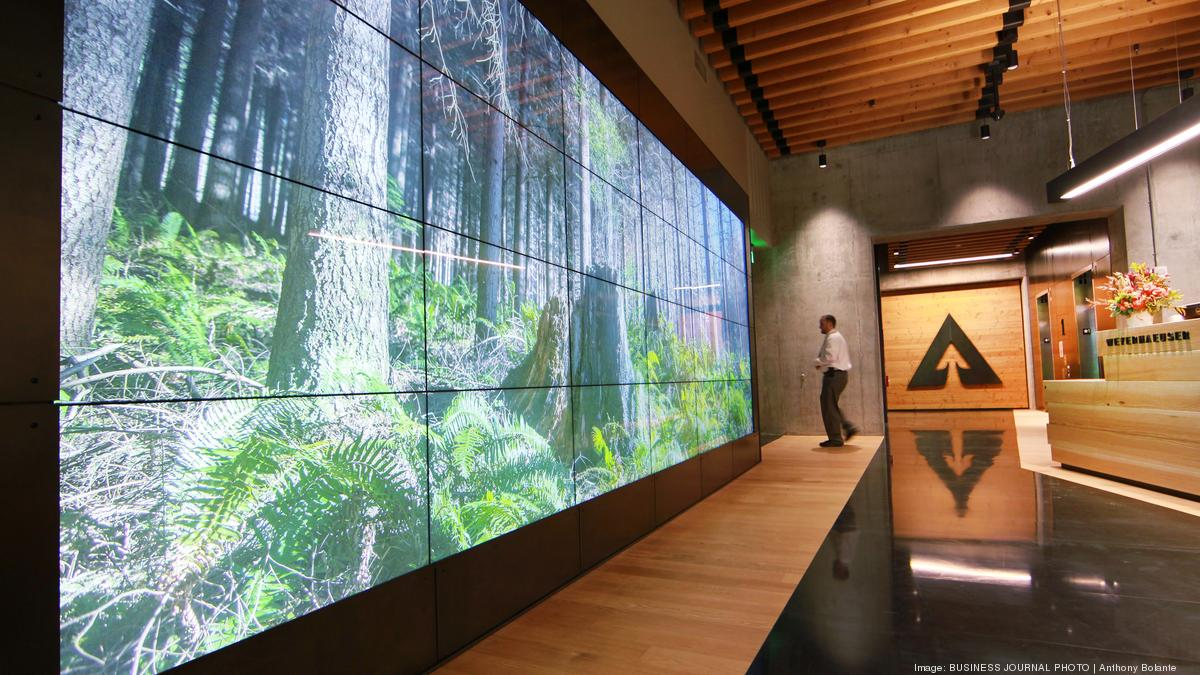 Weyerhaeuser shows off its new 'tree fort' headquarters in