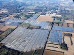 Minnesota's largest solar farm complete; here's what it looks like
