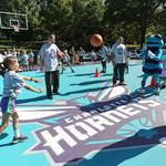 Making the Hornets a community player