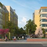 USF unveils new $134M student housing project
