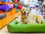 Pet store boom hits Columbus as local and national chains compete