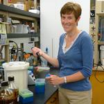 WSU professor gets $415,000 grant for cancer research