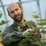 $4M OSU genetic engineering grant includes a Monsanto connection