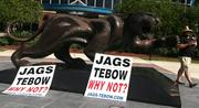 Jags, Tebow: Why not? Why the heck not?