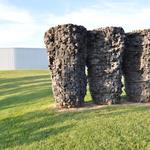 <strong>Nelson-Atkins</strong> takes expansion plans to City Council