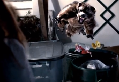 An ad for Washington's health insurance exchange features a woman who just misses being attacked by a crazed raccoon.