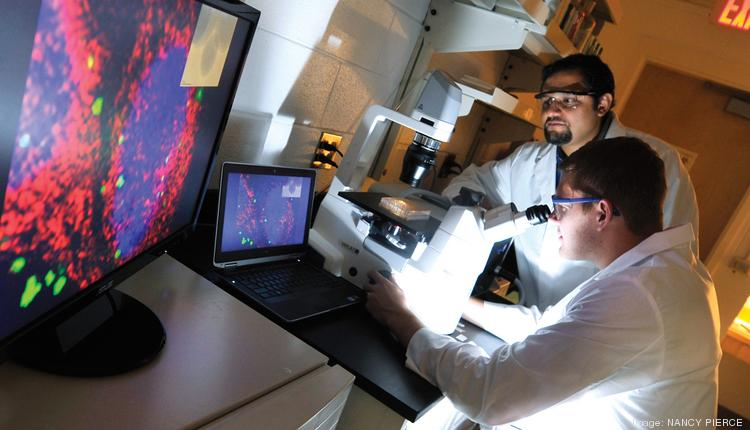 Zach Lyles, a student in the doctorate program in nanoscale science at UNC Charlotte, examines materials with the assistance of Juan Vivero-Escoto, assistant professor in chemistry. Lyles' research involves the use of nanoparticles to deliver drugs into cells.