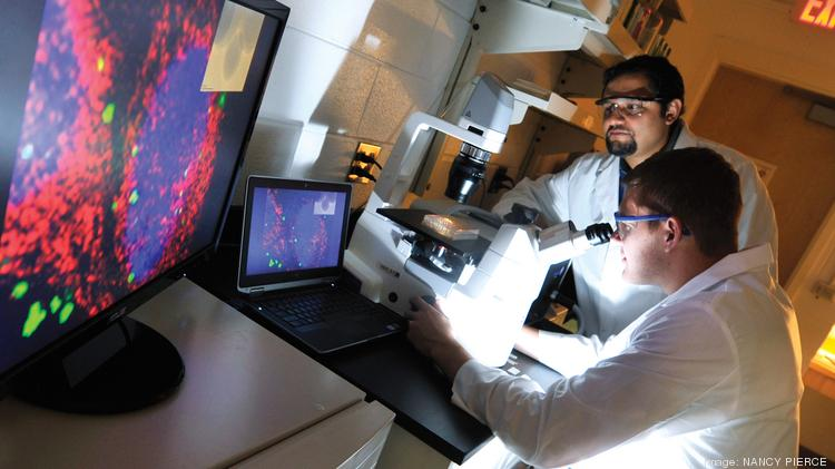 The University of Central Florida approved a new master's in nanoscience technology that should provide an economic boost to the region.