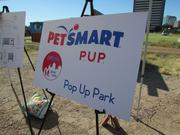 PetSmart is set to launch the first Pop Up Park around Thanksgiving Day at PHX Renews. The park is a storage container that has all of the essential items for a dog park and can be relocated.
