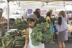 Farmers markets put down new roots