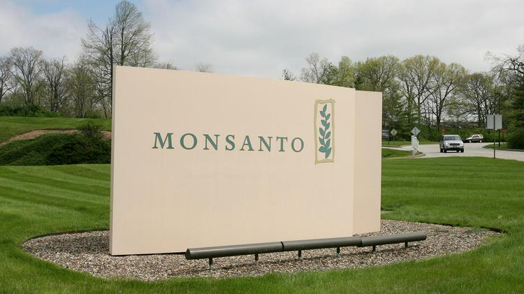 Monsanto has contributed to a campaign fighting an anti-GMO vote in parts of Oregon.