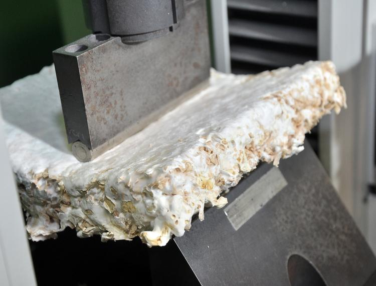 Ecovative Design LLC, a manufacturer of biomaterial insulation products in Green Island, NY, is among several organizations that are working with the state to develop more energy efficient buildings.