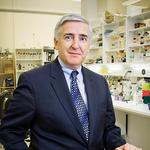 Joslin CEO focused on innovation to treat diabetes after his own son's diagnosis
