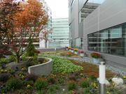 Patients can relax in a second floor, outdoor tranquility garden