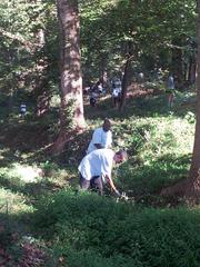 First Data Employees Clean Up Chastain Park on Hands On Atlant Day 2013.
