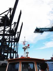 The new Super post-Panamax cranes seem like they are getting saluted by the port's existing cranes.