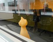 A plastic cat peering out of a conference room.