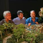 James Cameron on Avatar Land: 'From what I've seen so far, it will be amazing'