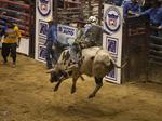 Yeehaw! Professional Rodeo Cowboy's Association agrees to 10-year C. Fla. deal
