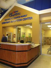 The new PetSmart Charities pet adoption center in Chicago can house up to 42 dogs and cats at one time.