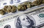 How the cloud helped Washington state find a marijuana consultant