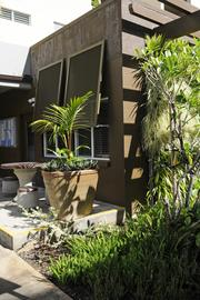 Potted plants, a living wall and window shutters add to the Hawaiian sense of place at 1122 Banyan St. in Honolulu.