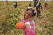 Aysha Anderson, a 5-year old who attends Carver Christian Academy, proudly poses with her just-picked New England Pie pumpkin at Carolyn's Country Cousins Pumpkin Patch. Because of its hard shell, this type of pumpkin is perfect for children ... and pies.
