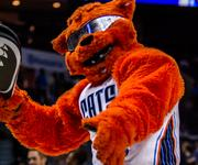 Charlotte Bobcats mascot Rufus entertains the fans.