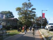 The bike path along Kelly Drive, with Philadelphia Girls' Rowing Club at left.