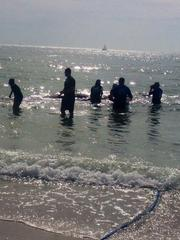 Aid workers help the beached whale in Madeira Beach.