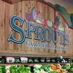 Organic grocer Sprouts is actively looking for sites in Tampa — again