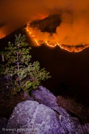 Wildfire burns through the Pisgah National Forest in North Carolina, November 2013.