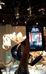 Three exhibits now have mobile components that work with Samsung tablets.