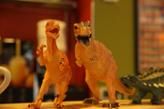 Laughing Planet Cafe's signature dinosaur toys wait for the start of business at the Portland restaurant' chain's Portland State University location.