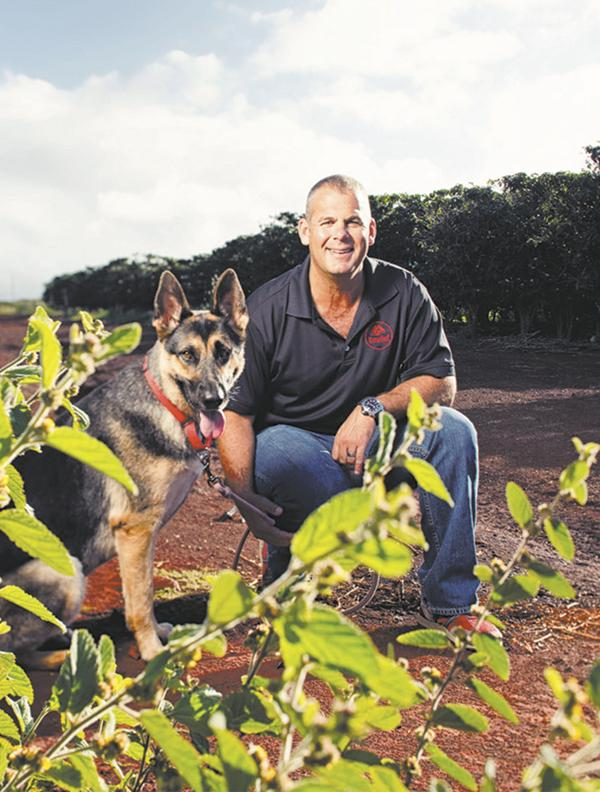 KonaRed Corp. CEO Shaun Roberts and his dog, Kaya, in a Hawaii coffee field.