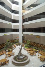 The central courtyard within the new six-floor expansion of Wake Forest Baptist's Comprehensive Cancer Center. The courtyard allows patients and their families a place to relax, as well as providing more natural light and windows for the new inpatient rooms.